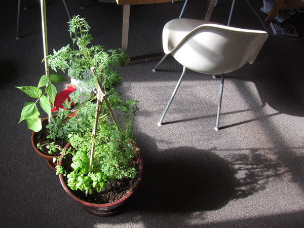 mobile-plants.jpg