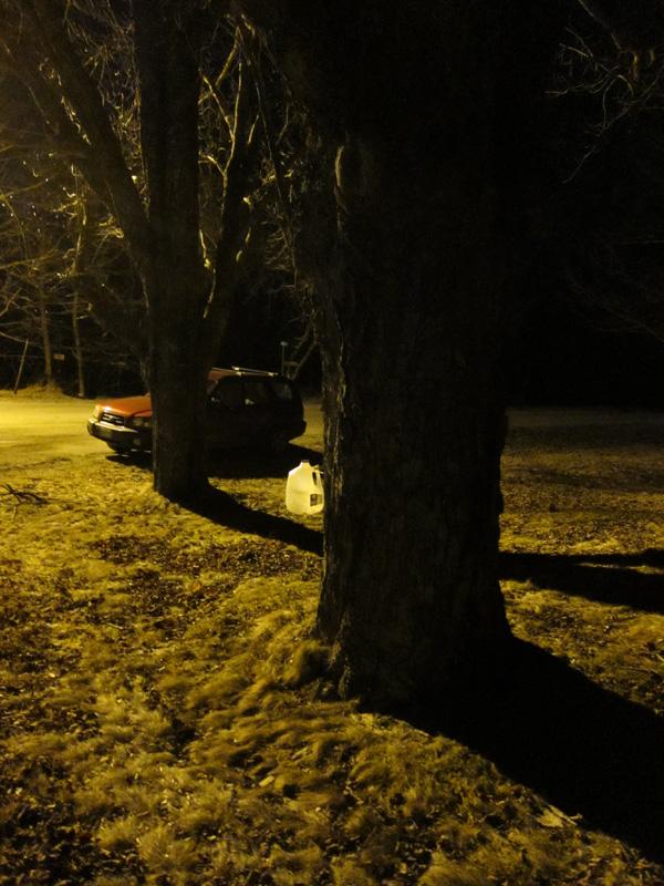 nightcollection.jpg